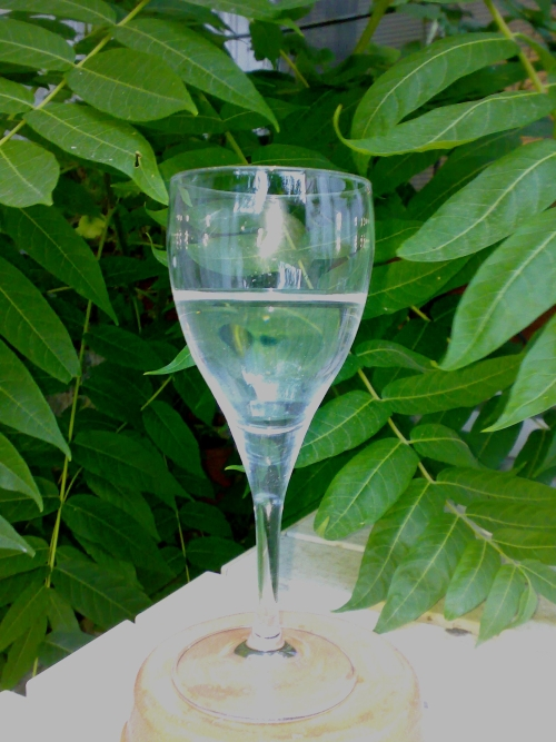glass-with-water.jpg